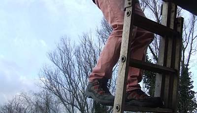 Cees mocht het dak op
