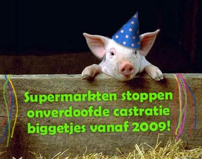www.wakkerdier.nl