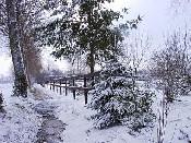 Bij gebrek aan sneeuw in Den Bosch maar een plaatje uit de oude doos: winter 2006 in Vinkel.