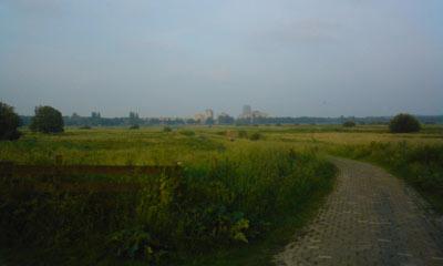 Natuurgebied het Bossche Broek.