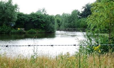 Toegankelijke of afgeschermde waternatuur? Particuliere waterpartij in Schijndel.