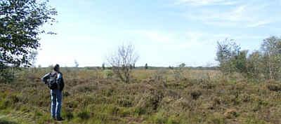 Natuurgebied de Deurnese Peel.