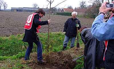Ik plant een boom tegen Waalboss, 23 november 2008.