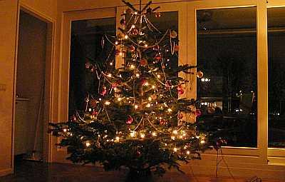 20091214_kerstboom_boven