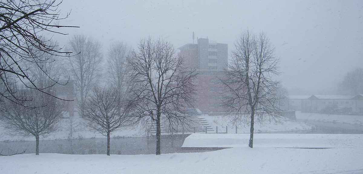 20091220_winter_1200x